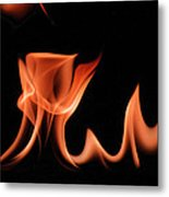 Flame With Images Metal Print