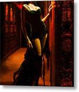 Flamenco Dancer 015 Metal Print by Catf