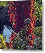 Flaming Beauty Metal Print