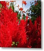 Flaming Feathered Flower Power Metal Print