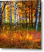Flaming Grass Metal Print