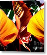 Flaming Plant Metal Print
