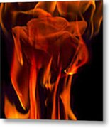 Flaming Rose Metal Print