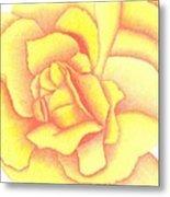 Flaming Yellow Rose Metal Print