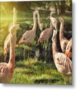 Flamingo Art Metal Print
