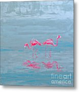 Flamingo Couple In Shallow Waters Metal Print