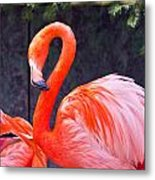 Flamingo In The Wild Metal Print