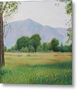 Flatirons From Dry Creek Meadow Metal Print