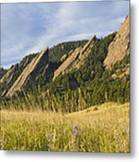 Flatirons With A Purple Wildflower  Metal Print