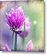 Fleurs De Oboulette Metal Print