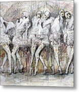 Flight Dancers Metal Print