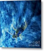 Flight For Two 2 Metal Print