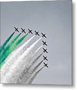 Flight Formation Metal Print