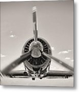 Flight In Black And White Metal Print