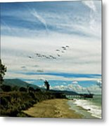 Flight Of Pelicans Metal Print