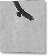Flight Of The Buzzard Metal Print