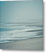 Flight Of Tranquility And Peace Metal Print