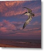 Flight Over Enchanted Beach Metal Print