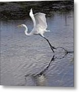 Flight Time 2310 Metal Print