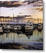 Floating Around Metal Print by Blanca Braun