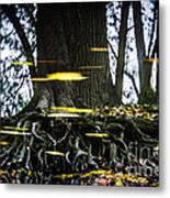 Floating Away On A Reflection Metal Print