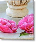 Floating Camellias Metal Print