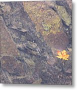Floating Down The River Metal Print