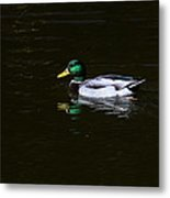 Floating In Peace Metal Print