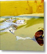 Floating In The Rain Barrel Metal Print