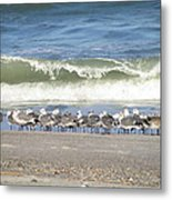 Flock And Wave Metal Print