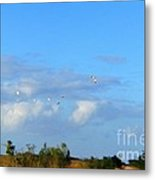 Flock Of Egrets Metal Print by Andres LaBrada