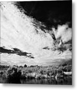 Flooded Grasslands And Mangrove Forest In The Florida Everglade Metal Print
