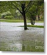 Flooded Park Metal Print