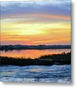 Flooded River Metal Print