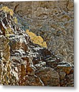 Flora In Sunlight In Big Painted Canyon Trail In Mecca Hills-ca Metal Print