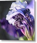 Floral 19 Metal Print