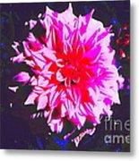 Floral Coral Metal Print