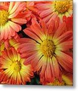 Floral Frenzy 2 Metal Print