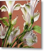 Floral Highlights Metal Print