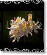 Floral Photomontage 1 Metal Print