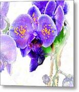 Floral Series - Orchid Metal Print