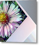 Floral Snap Shot Metal Print