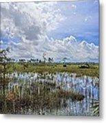 Florida Everglades 0173 Metal Print