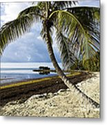Florida Keys Beach Metal Print