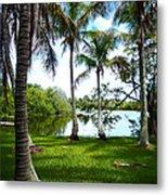 Florida Lake Metal Print