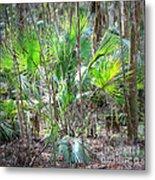 Florida Palmetto Bush Metal Print