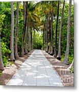 Florida Walkway Metal Print