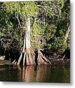 Florida Waterways 2 Metal Print