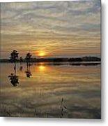 Florida Wetlands Metal Print