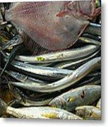 Floundering Metal Print